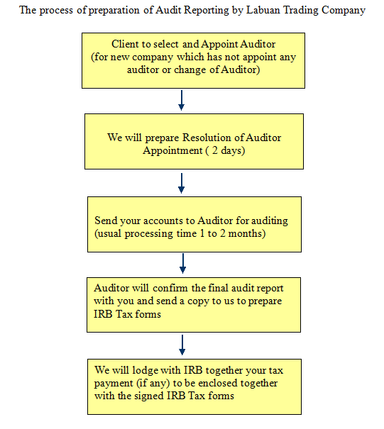 Labuan Company Auditing Process